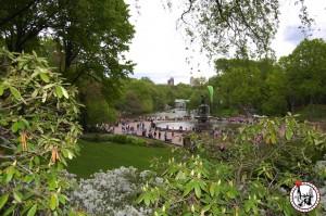 park-wilfried-MAI
