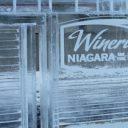 Oenotourisme: le festival du vin de glace au Niagara