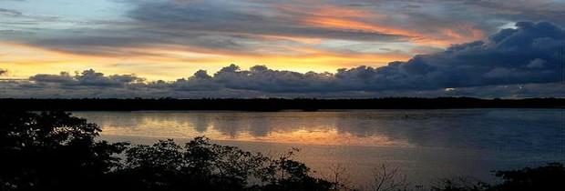 Les parcs nationaux sénégalais: joyaux d'Afrique de l'Ouest