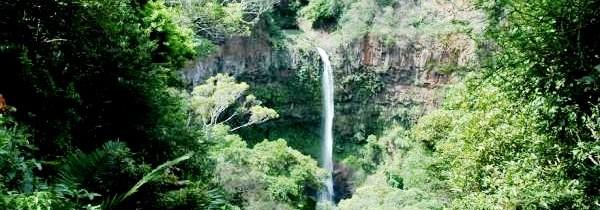Top 3 des aires protégées à Madagascar