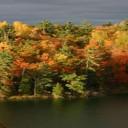 Que faire lors d'un séjour linguistique à Ottawa?