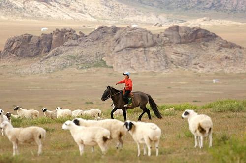 cavalier mongolie