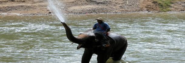 Les 5 meilleures activités à faire en Chiang Mai