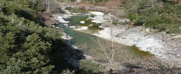 Rivière Cevennes