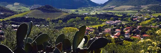 La Corse : paradis méditerranéen pour les vacances