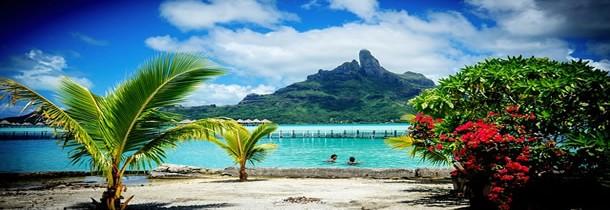 Les saveurs de la Polynésie : le thon cru au lait de coco