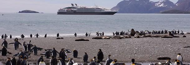 L'Antarctique : une destination exceptionnelle à découvrir