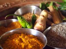 cuisine inde 1