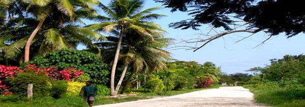 À la découverte de Vanuatu