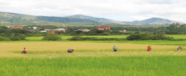 haute-terre-madagascar
