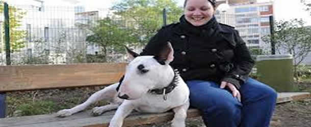 voyage avec chien modifé