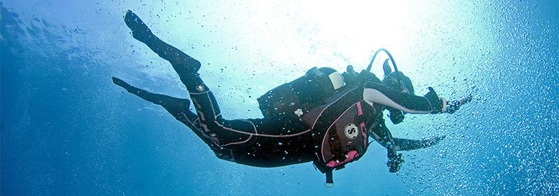 plongée-sous-marine-en-bretagne