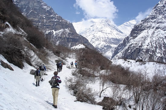 Tourists_trekking_in_Annapurna_region