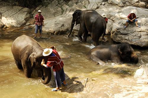 Vacances en famille à Bangkok - 1