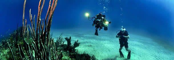 Découvrir la plongée au cœur des Bahamas