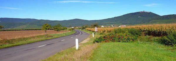 10 villages à découvrir sur la Route des Vins d'Alsace