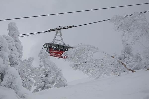 skijapon