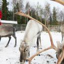 Noël en Laponie, à la découverte du village du père noël !