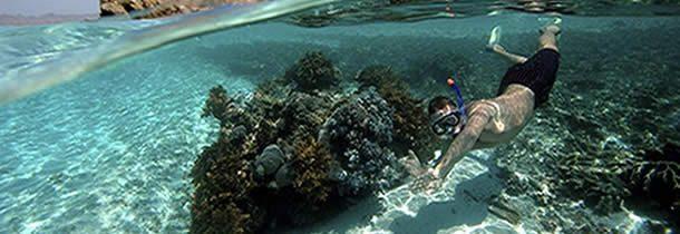 Profiter des vacances pour débuter en snorkeling