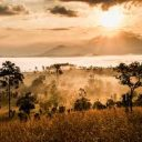 Partir en voyage safari en Afrique du Sud : parcours conseillés