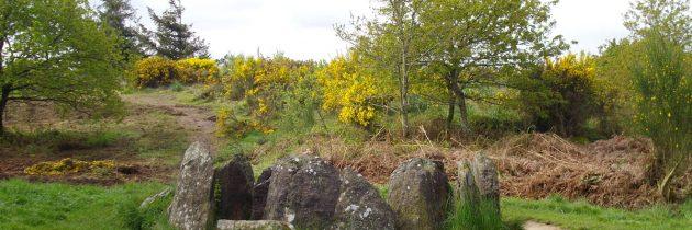 Partir à la découverte de la forêt de Brocéliande en Bretagne
