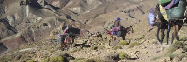 Quel budget préparer pour un trekking dans le désert du Maroc