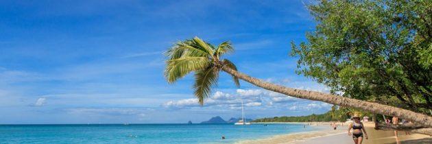 Voyagez en famille sur une île paradisiaque