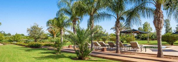Profiter de sa journée piscine dans une maison d'hôte à Marrakech
