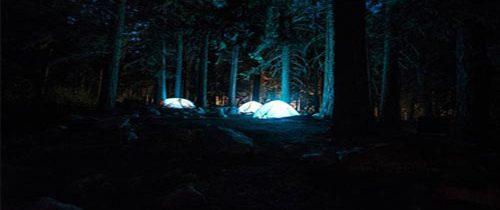 Île d'Oléron et camping : l'alternative très plébiscitée par les français