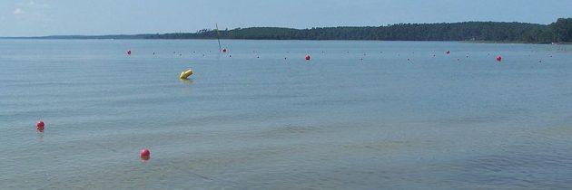 3 raisons de faire du Camping La Côte d'Argent une destination de rêve pour les vacances