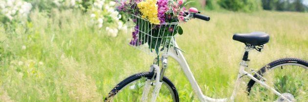 Ecologiques et sportives, les vacances à vélo deviennent tendance