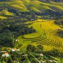 Séjour au Vietnam : vivre de belles expériences à Sa Pa