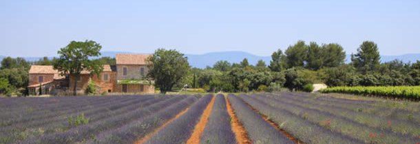 3 raisons de réserver votre location vacances avec Plaisirs et Maisons de Provence