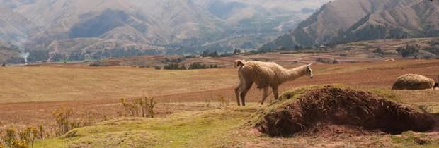 Le Pérou, une destination addictive