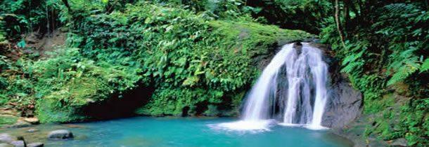 Visitez l'ile de Guadeloupe