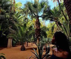 Il n'y a pas mieux qu'un séjour à Marrakech