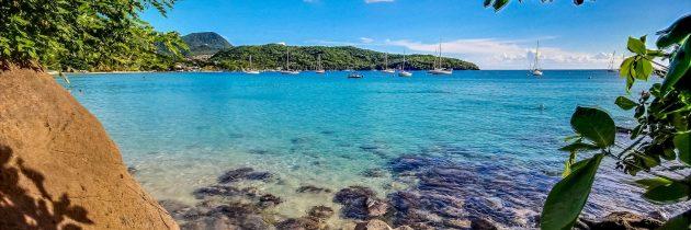 Les bons plans à savoir avant de partir à la découverte de la Martinique
