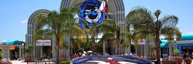 Vacances aux USA : 3 activités à faire lors d'un séjour à San Antonio