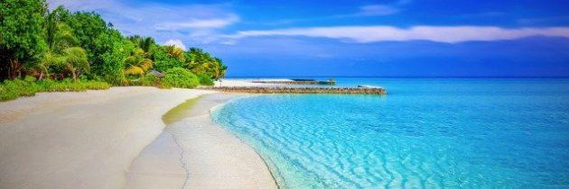 Voyage à Zanzibar : que faire et que voir ?