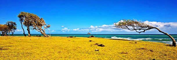 Vacances en Guadeloupe : Ce que l'on peut découvrir en une semaine